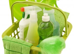 small business eco friendly cleaning products