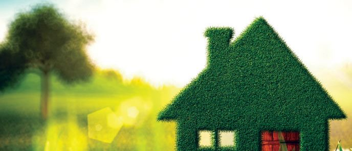 Eco Friendly Home Inspection Company